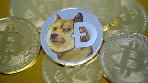 Everything about Dogecoin in Reddit