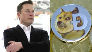 Elon Musk and dogecoin price