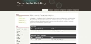 crowdsale.holdings review