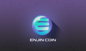 reasons for Enjin rally