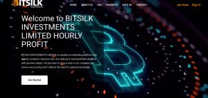 bitsilk.investments review