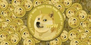 what is dogeday