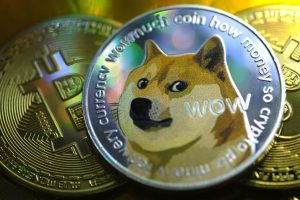 why dogecoin rises