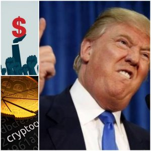 Bitcoin is a scam, currency of the world, Dollar Bitcoin,cryptocurrency regulations, anti-crypto policies